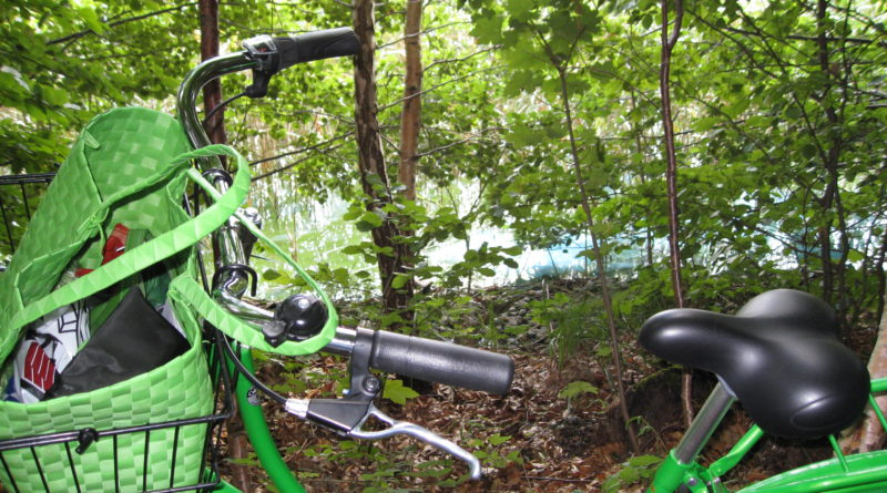 Grøn transport