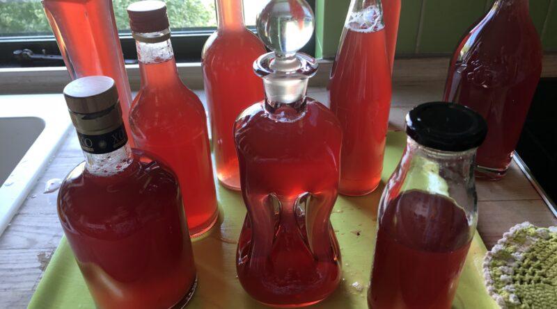 CO2 venlig marmelade og saft